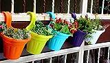 #10: Balcony Railing Planters / Vertical Hook Pots / Vertical pots/planters pack of 5 ( Multicolor ) ( Best Quality ) - SriSai Naturals