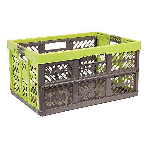 OKT Profi-Klappbox (45 Liter, PP, braun / grün)
