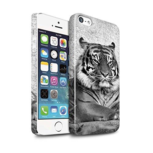 STUFF4 Glanz Snap-On Hülle / Case für Apple iPhone SE / Erdmännchen Muster / Zoo-Tiere Kollektion Tiger