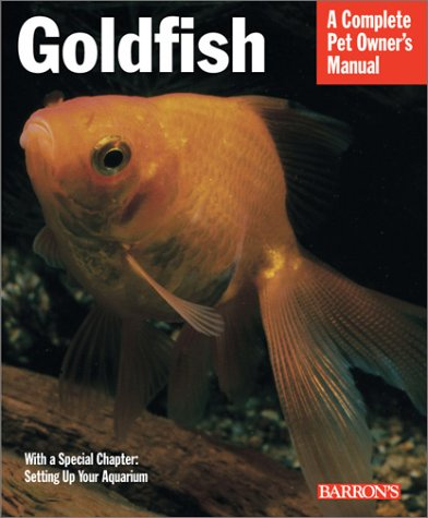 goldfish-everything-about-aquariums-varieties-care-nutrition-diseases-and-more