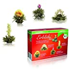 Creano ErblühTee Bio Teeblumen Mix – 8 Teekugeln in 4 Sorten in Bio Qualität | Weißer Tee