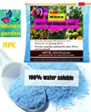 #2: NPK 20 20 20 Water Soluble Fertilizer for Plants (450 gm) - Free Shipping