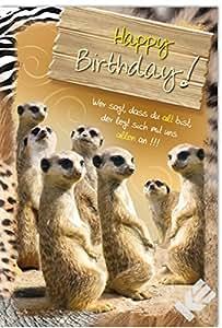 Carte d'anniversaire motif happy birthday modèle animal, suricates contenu de la livraison :  lot de 10