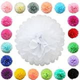 TtS (Weiß) Seidenpapier PomPoms Papier Blumen Ball Hochzeit Party Dekoration-15cm