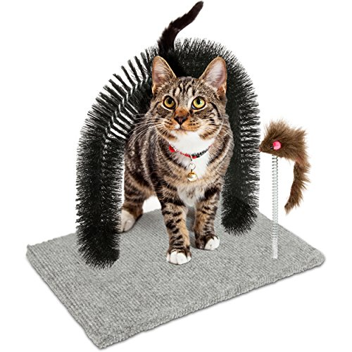 Oramics Katzenspielzeug und Enthaarungsbogen – Spielzeug und Kratzteppich für Katzen inklusive gratis Katzenminze – Massagebogen mit Spielzeug Mäuschen
