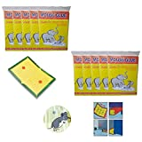 #10: Mouse Insect Rodent Lizard Trap Rat Catcher Adhesive Sticky Glue Pad (Mouse Glue Pad) (set of 10) | | Mouse trap glue | Mouse repellent for home | Mouse trap for big rats | Mouse kill glue| Mouse kill trap | Rat Terminator |
