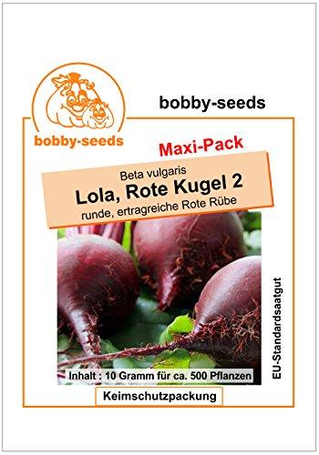 Bobby-Seeds Rübensamen Lola, Rote Kugel 2, Rote Bete Maxipack