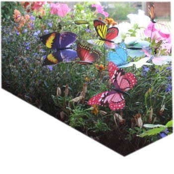 colourful-garden-butterflies-on-sticks-x10-dia-8cm-by-west5products