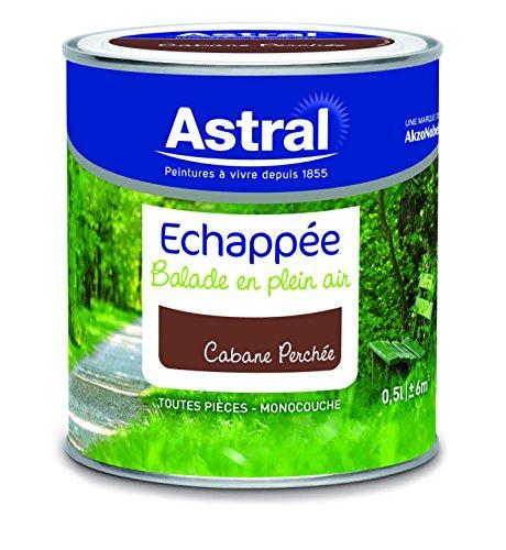 AkzoNobel AS5214401 - Vernice acrilica, 0,5 L, colore: Marrone