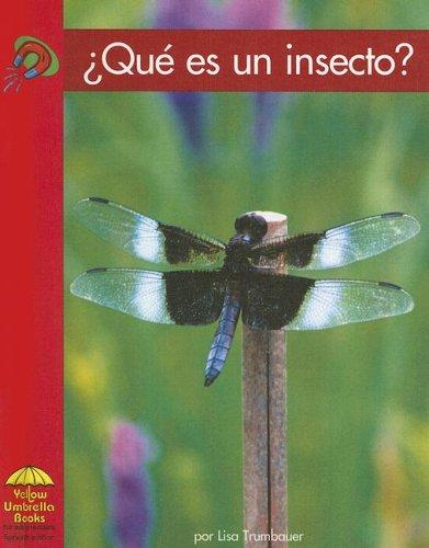 Que Es un Insecto? (Yellow Umbrella Books (Spanish)) por Lisa Trumbauer