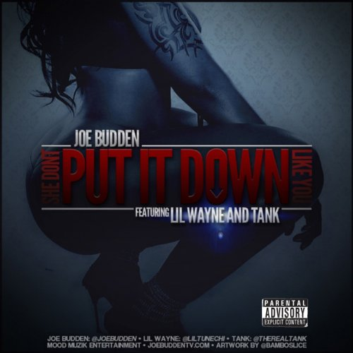 She Don't Put It Down Like You (feat. Lil Wayne and Tank) [Explicit]