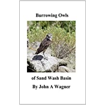 Burrowing Owls of Sand Wash Basin (English Edition)
