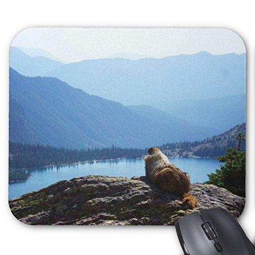 marmot-oyler-mouse-pad