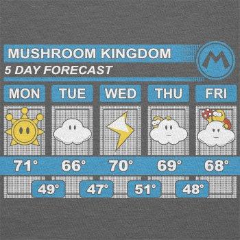 TEXLAB - Mushroom Kingdom Weather Forecast - Herren T-Shirt Grau