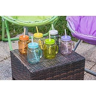 Shanley Homewares Set von 6Weckgläser Rundrandgläser mit Deckel Trinken Tassen, mit Griffen und Trinkhalme Bunt, Glas, Multi, 480ml