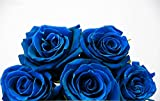 #10: Blue Rose Flower Seeds Very Easy to Grow in any Season and Weather Conditions - BEE Garden Organic