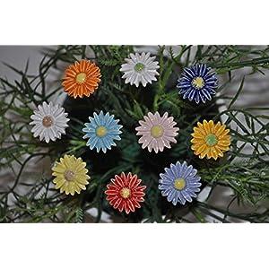 10 Keramikblumen: Gänseblümchen, bunt 2,5 cm von SylBer-Ceramics aus Markkleeberg