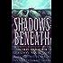 Shadows Beneath: The Writing Excuses Anthology (English Edition)