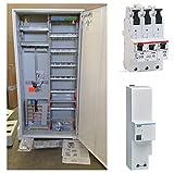 TM: Striebel&John ABB Zählerschrank 1 Zähler 3.HZ verdrahtet mit APZ-Verteilerfeld/KS243Z + 1x ABB SLS 63A + 1x SPA301Z Überspannungsschutz, für das Einfamilienhaus