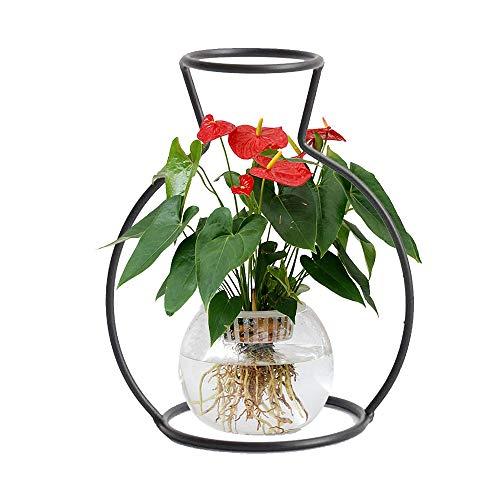 GFEU Gusseisen Blume Pflanzen Topf Halter Metall Tisch Vase Ständer Rack für Sukkulenten Pflanzer Kräuter Kaktus (Stil D) -