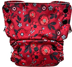 Bumpadum Duet Stay-Dry Reusable Cloth Diaper for Overnight/Heavy Wetter Usage (Eden)