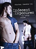 Indecent Exposures: Gay Erotic Stories (English Edition)