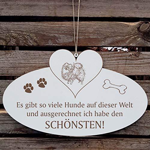 SCHILD Dekoschild mit Herz « Schönster HUND der WELT - ZWERGSPITZ » ca. 20 x 12 cm - mit Motiv und Spruch - Shabby Vintage Holzschild Türschild - Spitz Pomeranian Poms