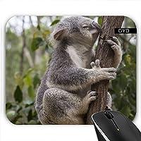 Muismat - Koala Australia Animale by