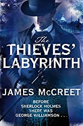 The Thieves' Labyrinth (Albert Newsome 3)