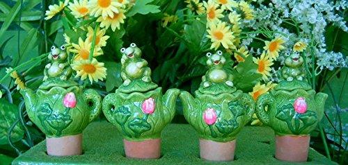 flowerpowerfarm.ch WSA096