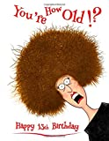 Happy 13th Birthday: You're How Old!? Notebook, Journal - Best Reviews Guide