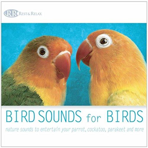 Bird Sounds for Birds: Nature Sounds to Entertain Your Parrot, Cockatoo, Parakeet and More -