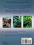 Image de Marihuana En Interior: El Sencillo Arte del Cultivo: Easy Marijuana Gardening, Spanish-Language Edition