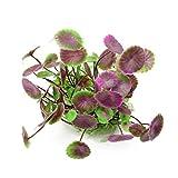 VORCOOL Aquariumpflanze Wasserpflanzen Deko Kunstpflanze (Lila Grün)