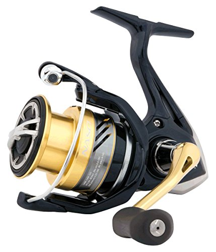 Shimano Nasci 3000 FB - Gear Top 3000