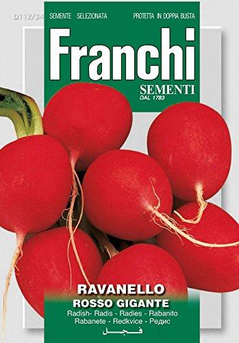 Franchi Sementi DBO112-34 Radieschen Burro Gigante (Radieschensamen) [MHD 12/2019]
