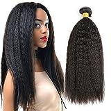 THATSYOU Kinky Straight Perücke Echthaar natürlichen schwarz Tissage brasilianisches für Frauen Black Kinky Teppan yaki Straight Human Hair Weaves 100g/PCS (1PCS 12inch)