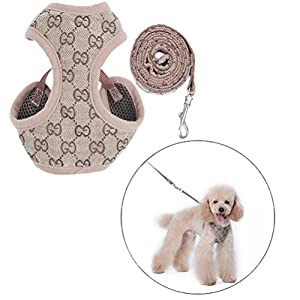 DD-Dog-Harness-and-Lead-Adjustable-Soft-Mesh-Vest-Harness-Leash-Set-for-Puppies-Dogs
