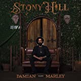 Stony Hill (Ltd.Deluxe Gatefold Coloured 2lp-Set) [Vinyl LP]