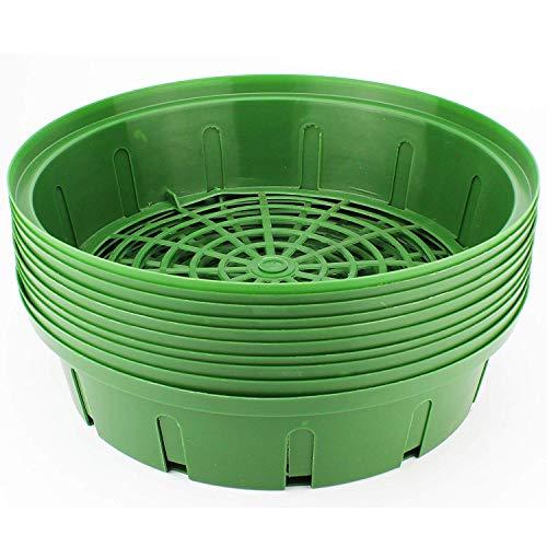 Mabax Pflanzkorb Set | Pflanzhilfe Zwiebelpflanzen | in Grün 26cm Ø | ideal für Zwiebeln & Knollen 10 STK.