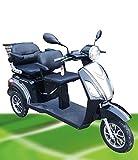 1000W ElektroMobil ZWEISITZER Modell David 2 bis 10 15 25km h ElektroScooter Senioren Mobility Vehicle Dreirad ElektroRoller Sonder Modell 2018 (Braun)