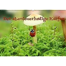 Der abenteuerlustige Käfer (Wandkalender 2017 DIN A2 quer): Kleiner Käfer unterwegs (Monatskalender, 14 Seiten ) (CALVENDO Tiere)
