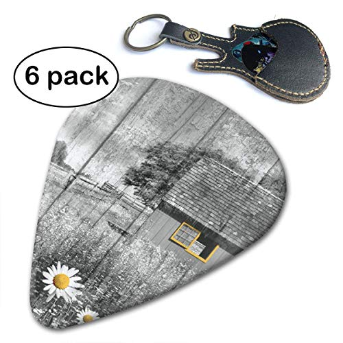 ntry Barn Daisy Flowers Guitar Picks for Your Electric Acoustic Or Bass Guitar Heavy Medium & Light.71mm ()