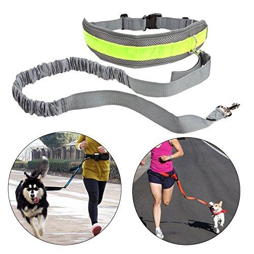 Chiguo Cani Guinzaglio Jogging Mani Libere Riflettenti Estensibile Regolabile Cintura per Cani Gatti Guinzaglio per la Corsa, Passeggiate, Jogging e Escursionismo ( Nero ) grigio