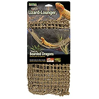 penn-plax lizard lounger, 100% natural seagrass fibers for anoles, bearded dragons, geckos, iguanas, and hermit crabs rectangular 7 x 29 inches Penn-Plax Lizard Lounger, 100% Natural Seagrass Fibers For Anoles, Bearded Dragons, Geckos, Iguanas, and Hermit Crabs Rectangular 7 x 29 Inches 51NbRp3HzyL