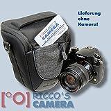 Dörr 456411Licol Classic M, Housse pour Appareil photo/petites Appareil photo reflex avec objectif Noir