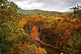 Poster-Bild 140 x 90 cm: The Buffalo River in Arkansas during the peak of the Autumn season., Bild auf Poster