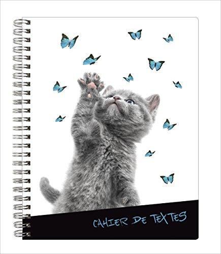 Exacompta Funny Pets Cahier de textes 17 x 22 cm visuel Chat Gris