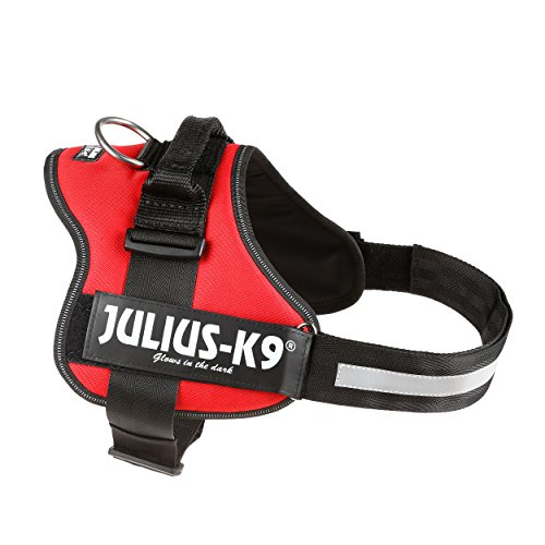 JULIUS-K9, 162R1, K9-Powergeschirr, Größe: 1, rot - 4