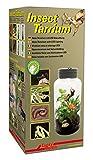 Lucky Reptile IT-5 InsectTarrium 5 l, Pet Kleinterrarium für den ersten Einstieg in die Terraristik